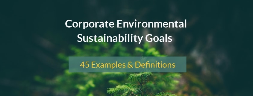 Corporate Environmental Sustainability Goals: 45 Examples & Definitions